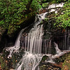 Small auxillary falls @ Rutledge Falls Natural Area - Tullahoma, TN
