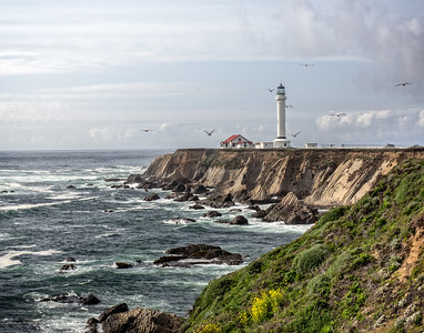 Pt. Arena Light - California