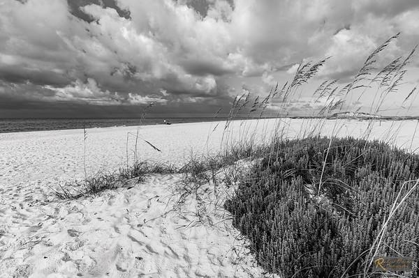 Navarre Beach Area