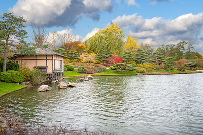 Japanese Garden at Chicago Botanic Garden