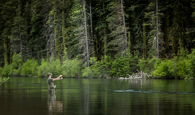 Fly fishing is great along the Truckee River!