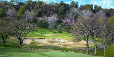 The 10th at Whitney Oaks