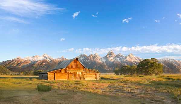 Arguably the most famous barn in the country, The T. A. Moulton Barn is all that remains of the homestead built by Thomas Alma Moulton and his sons between about 1912 and 1945.  It was the first of two barns constructed by the Mormon settler in what is now Grand Teton National Park where it has become the symbol for the Jackson Hole area.  This piece is now available in Acrylic, Canvas and Print - please contact me to discuss custom sizes, material and pricing!