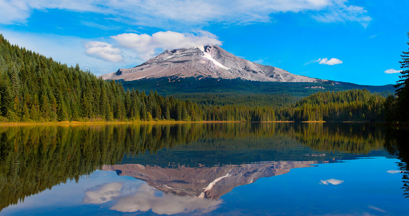 Mt Hood, reflecting in Trillium Lake