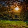 Sunset at Cliveden