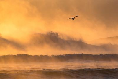 Cape Cod National Seashore, MA