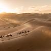 Desert Mornings