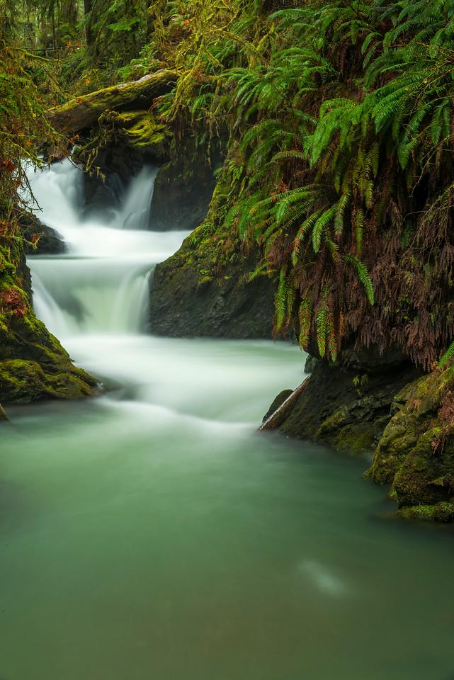 Willaby Creek Falls