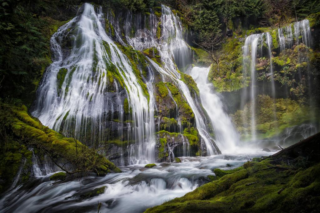 Panther Creek Falls.