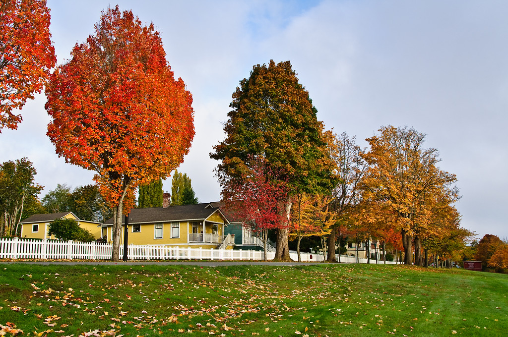 Along the street in Port Gamble in early fall.