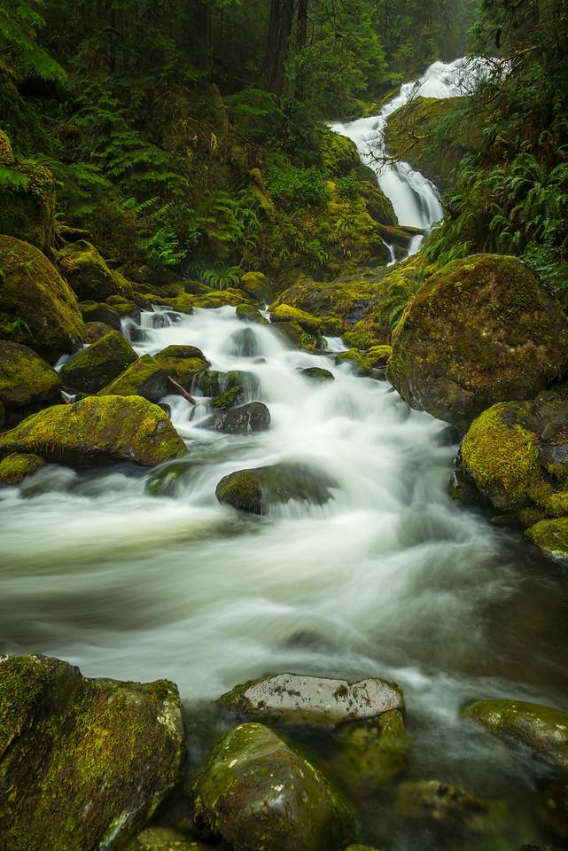 Bunch Creek Falls.