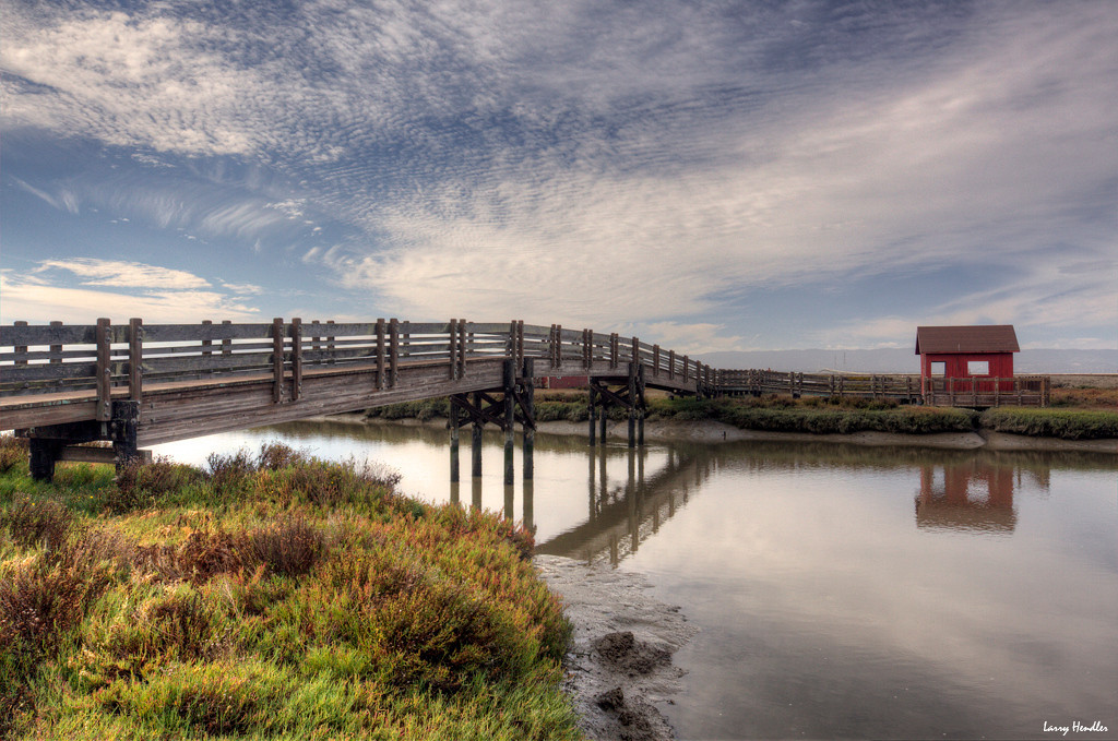 IMAGE: https://photos.smugmug.com/Landscape-and-travel/Don-Edwards-Preserve/i-pVc7QsV/0/XL/foot%20bridge-XL.jpg
