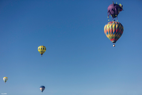 Purple People Eater above Magic Moments with Coyote Moon to the left. Two additional balloons at the bottom