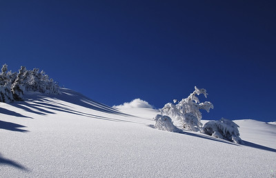 Monte Orsaro, invernale.