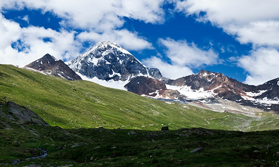 Gran Zebrù 1, Alps
