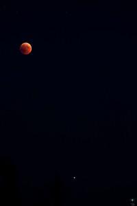 Eclissi di luna 1