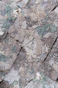 Rock Mosaic