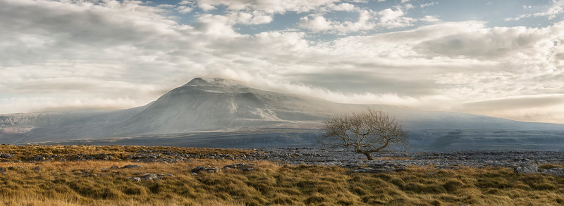 Icy Ingleborough and Ash