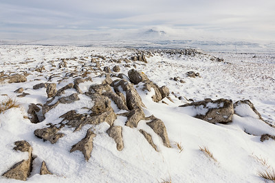 Rocks, Grass, & Snow, Kingsdale