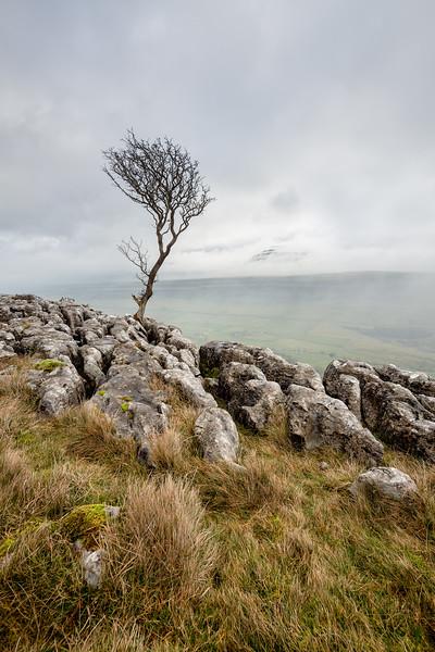 Limestone Lookout - 2
