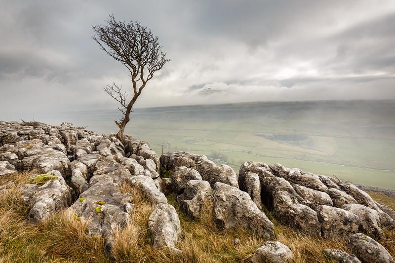 Limestone Lookout
