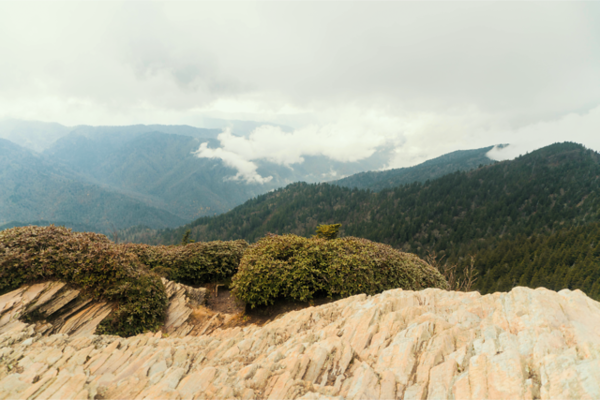 Mount Leconte, Tennessee