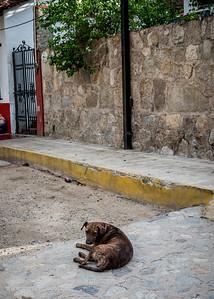 Nuevo Vallarta, Mexico