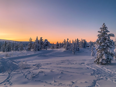 End of a day in the snow