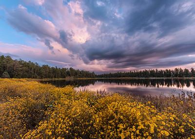 Woodland Lake Sunset