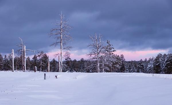 In Winter's Clasp