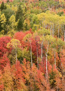 Slope of Many Colors