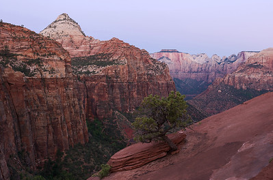 Zion Canyon Overlook