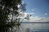 Where Murdering Creek joins Lake Weyba, Australia - January 2008