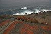 Remarkable Rocks, Flinder Chase National Park, Kangaroo Island, Australia - January 2008