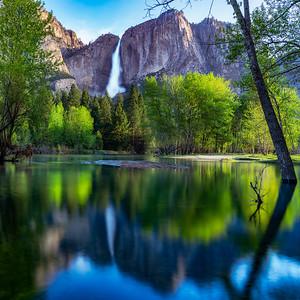 Yosemite Falls Spring