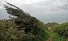 East Prawle, Devon - September 2007