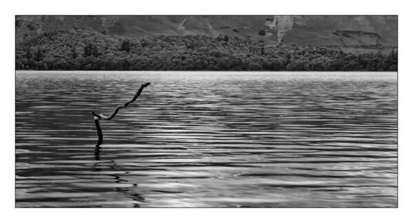 23-09-2008 16-33-06 Derwent Water 0211 bw