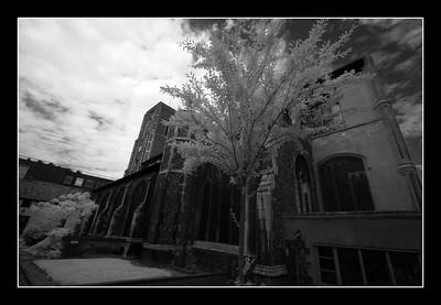04-06-2007 11-16-37 Norwich 0003
