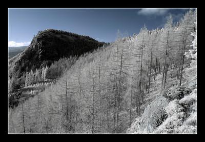 2006-12-01 09-52-26 Thirlmere 0053