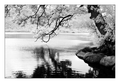 02-10-2008 09-34-29 Ullswater 0338