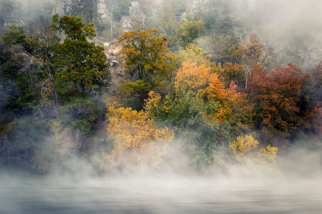 Autumn in the Mist - Beavers Bend State Park, Oklahoma