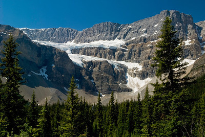 """Toes of the Crow"" Ends of the Crowfood Glacier hang high above the forest in Banff National Park"