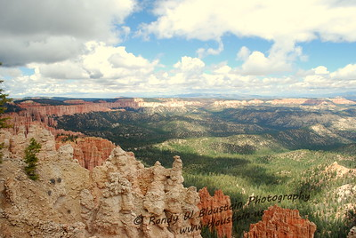 Bryce Canyon NP-6