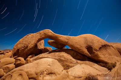 Arch Rock with star trails - Joshua Tree National Park