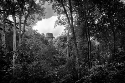 Temple at Tikal (Guatemala)