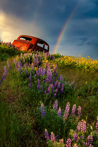 Columbia Hills - old car, rainbow, and wildflowers