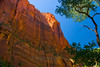 Zion Cliffs, Zion National Park, Utah