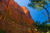 Zion Cliffs, Zion National Park, Utah