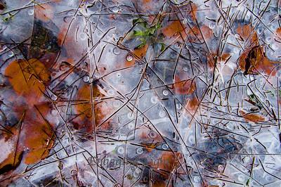 Pond Ice Art