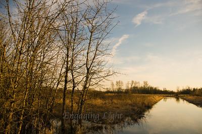 Tranquil Evening - Ankeny Wildlife Refuge, Oregon